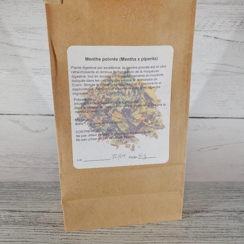 menthe poivrée (mentha x piperita)